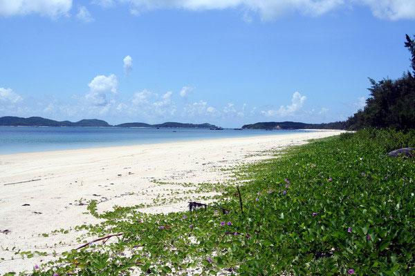 Đảo Cô Tô xinh đẹp
